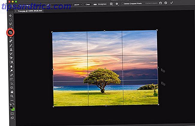 Aprenda los trucos para recortar una foto, perfilar el cuadro, enfocar el sujeto correcto e incluso cambiar la perspectiva de la escena.