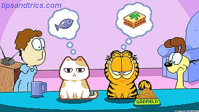 nom chat garfield