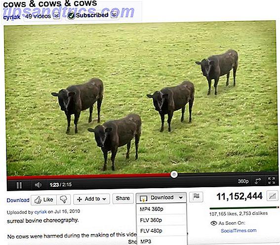 Es gibt oft Zeiten, in denen Sie möchten, dass Sie ein Video in eine GIF-Datei verwandeln können.  Vielleicht möchtest du einen kurzen Clip durch das Büro laufen lassen, ohne jemanden zu entlassen, der YouTube angeschaut hat.