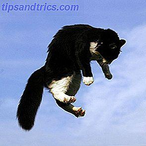 Si vous n'avez pas encore expérimenté la joie de posséder un animal de compagnie, alors vous ratez l'un des plaisirs simples de la vie.  Bien que posséder un animal de compagnie ne soit pas une expérience totalement positive - surtout quand ils disparaissent après un temps trop court sur cette Terre - les points positifs l'emportent de loin sur les négatifs.