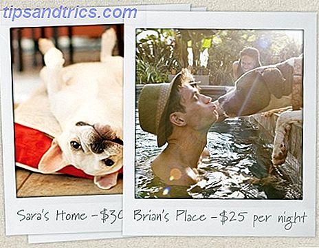 DogVacay: encuentra un hogar temporal para tu perro
