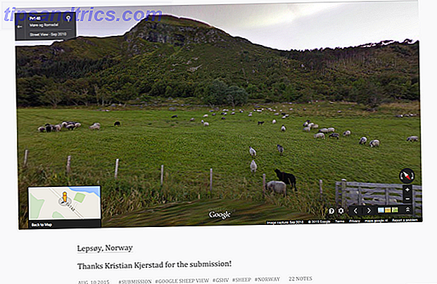 google-sheep-view