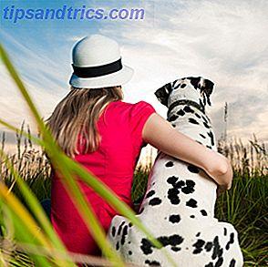 Om du funderar på att lägga till ett nytt husdjur i ditt hushåll, kanske du vill titta på att anta eller rädda en från ett skydd i stället för att köpa en från närmaste husdjursaffär.  Lokala djurhem och räddningsgrupper huser tillfälligt hemlösa hundar, katter och andra djur som behöver ägarna.
