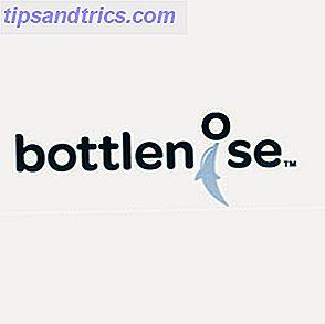 """Bottlenose es un nombre extraño para un servicio web que pretende unir sus redes sociales en un solo lugar.  Pero esta nueva aplicación se trata de una """"inteligencia colectiva inteligente"""" que recopila de sus cuentas de Twitter, Facebook, LinkedIn y Google Reader."""