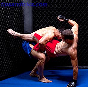 las mejores artes marciales mixtas