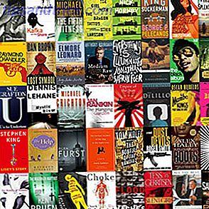Är små demoner en annan typ av bok webbplats?  Det ger oss en annorlunda ta på böcker vi tycker om, och så är det definitivt friskt.
