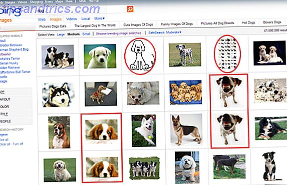 Η αναζήτηση εικόνας του Bing κάποτε προκάλεσε την Google, προσφέροντας περισσότερες δυνατότητες και καλύτερο σχεδιασμό.  Με την άπειρη κύλιση και τη δυνατότητα αναζήτησης παρόμοιων εικόνων, ο Bing ήταν δικαιολογημένα καλύτερος από το Google στην αναζήτηση εικόνων μόλις πριν από λίγα χρόνια.