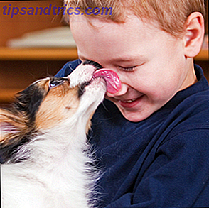 img/internet/946/10-puppy-finding-services-find-your-next-best-friend.png