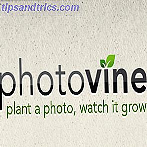 Haga crecer sus fotos con Photovine de Google [iOS]