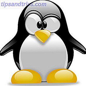 Linux es un sistema operativo altamente desarrollado, estable y avanzado; esto, nunca lo cuestionaré.  Viene en todos los sabores imaginables, desde soluciones de servidor que simplemente funcionan (una vez más, esto no se puede discutir) hasta versiones de escritorio con más software del que cualquier persona podría necesitar.