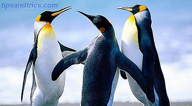 ¿Quién hace Linux?  ¿Por qué lo están regalando?  ¿Se puede confiar en estas personas?