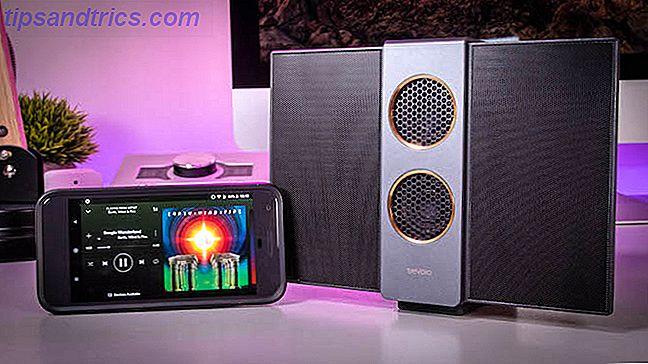Un haut-parleur électrostatique est une bête inhabituelle et rare.  Le TreVolo S est un peu trapu, avec deux grandes ailes fines qui se rabattent pour un transport facile.  Mais comment ça sonne vraiment?