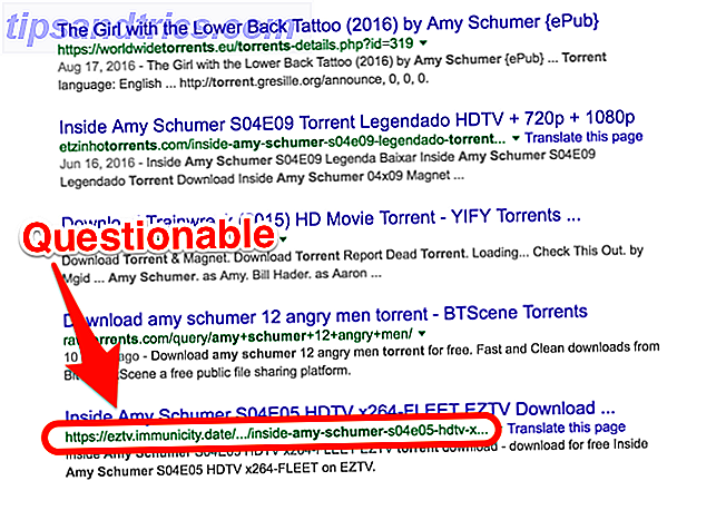 Amy Schumer Torrent URL