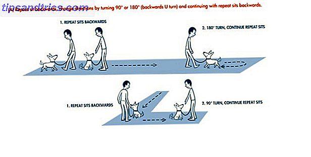 6 Αντιδραστικές ιστοσελίδες κατάρτισης σκυλιών για τους ιδιοκτήτες που υπογραμμίζονται