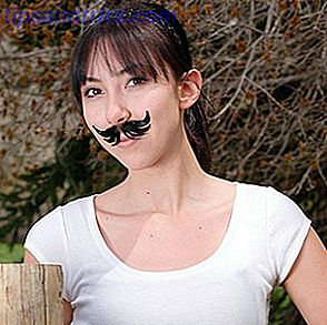 Vier Movember & The Magnificence of Mustaches met deze internetbronnen